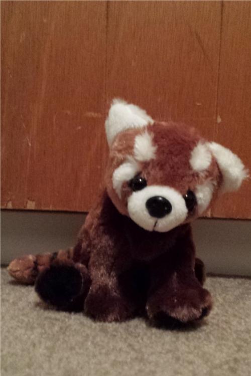 Stuffed Red Panda
